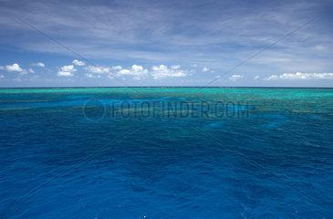 Cairns  Australien  Blick ueber den Pazifik am Norman Reef
