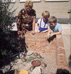 Weimar  DDR  Kinder und Erzieherin schauen sich im Kindergarten Schildkroeten in einem Gehege an