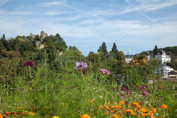 Badenweiler  Deutschland  Blick auf die Burgruine von Badenweiler