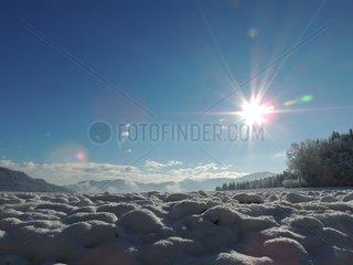 Wintersonne Schnee am Acker Sonnenlicht