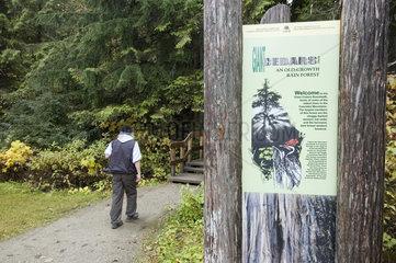 Revelstoke  Kanada  Eingang zum Giant Cedars Boardwalk Trail
