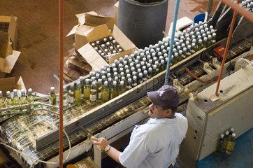 Puerto Plata  Dominikanische Republik  in der Rumfabrik von Brugal