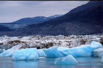 Valdez  USA  Eisschollen des Columbia-Gletscher in der Prinz-William-Sund