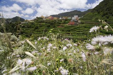 Las Carboneras  Spanien  im Anaga-Gebirge