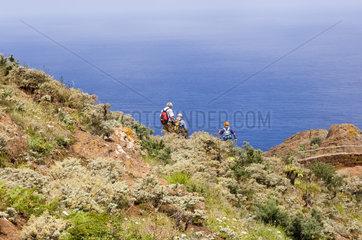 Vega de las Mercedes  Spanien  Wanderer im Anaga-Gebirge
