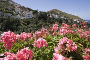 Almaciga  Spanien  Blick auf Almaciga