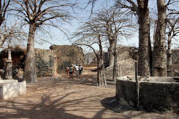 Gambia  Besucher auf Kunta Kinteh Island