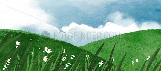 Landschaft Sommerhuegel und Bluemchen