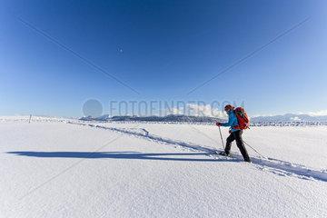 Panoramablick auf die Nagelfluhkette in den Alpen