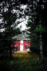 Verstecktes Rotes Reetdachhaus