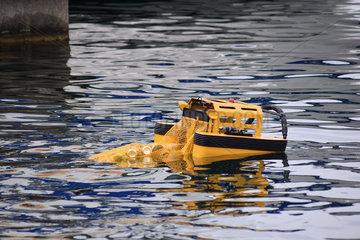 schwimmender Muellsammelroboter