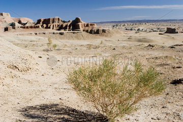 Devil City in der Wueste Gobi | desert of Gobi Devil City