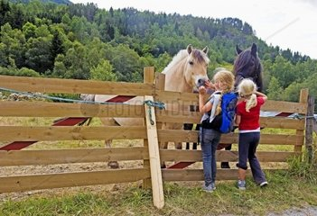 Girls and horses in western Norway