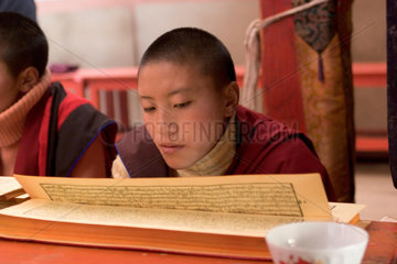 Tibetische Nonne im Kloster   tibetian nun in a monastery