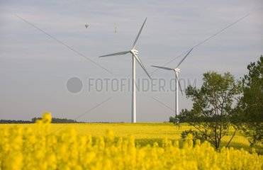 wind energy plant in Western Pomerania