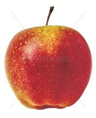 Apfel vor weissem Hintergrund