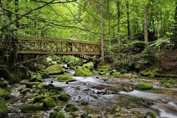 France  Haute-Savoie  Avant Pays Savoyarde  landscape and river in the Cirque de Saint Meme