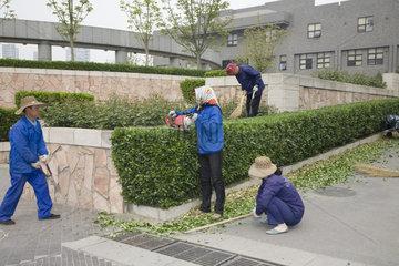 Peking  Landschaftsgaertner