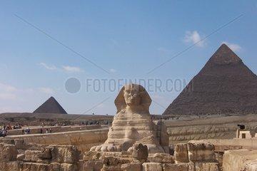 Gizeh Sphinx Chefren Pyramide Aegypten