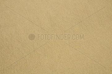 Sandflaeche