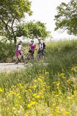 Radfahrer im fruehlingshaften Feld