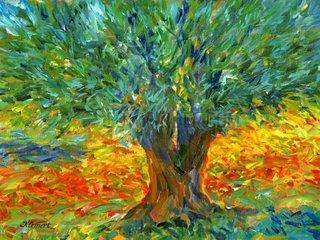 Olivenbaum Griechenland