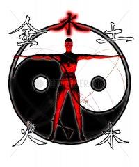 Chinesische Medizin Koerper Aufteilung Yin Yang Ausgleich 2