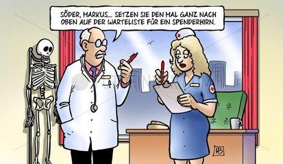Spenderhirn