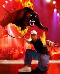 Basler Buch: Black Tiger  Urs Baur