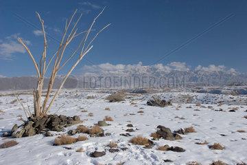 Aksu  Wuestenandschaft | Aksu  desert landscape