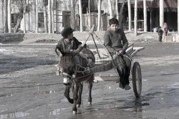 Bachu  Jungen mit Esel | Bachu  boys with donkey