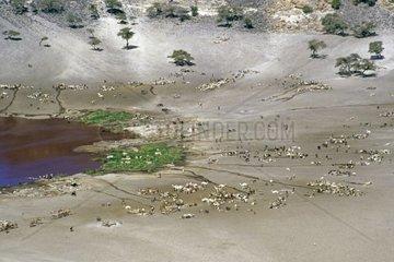 Sudan  Atrum crater