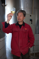 Weinproduktion Dragon Seal nahe Beijing