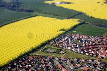 Dorf mit Rapsfeldern in Mecklenburg-Vorpommern
