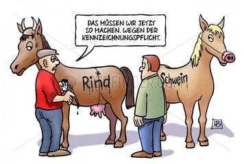 Pferde-Kennzeichnung