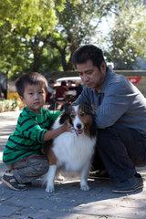 Beijing  Haustiere