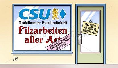 CSU-Filz