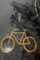 Fahrradzeichen mit Pfeil auf einer nassen Strasse in der Schweiz in Bern.