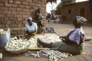 Malawi  Women in a village of the southern