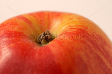 Apfel Kidds Orange