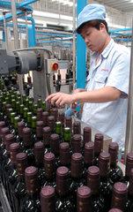 China  Weinanbau