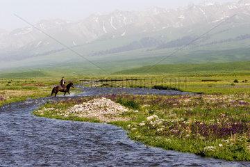 Nalati Weideland | Nalati Grassland