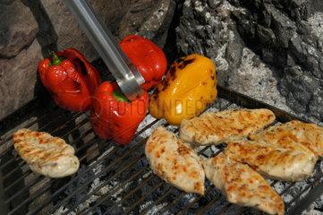Fleisch und Gemuese auf Grill.