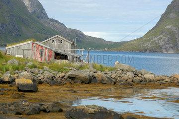 Landschaft auf den Lofoten  Norwegen.