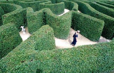 Labyrinth Dreilaendereck