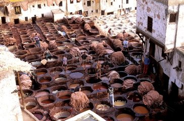 Tanneries in Fes  Morocco