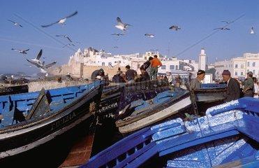 Fishing-boats in Essaouira  Morocco
