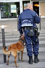 Private Schutz