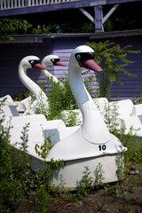 Spreepark  Kulturpark Plaenterwald