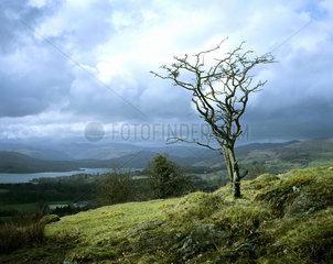 Lake District  Cumbria  England